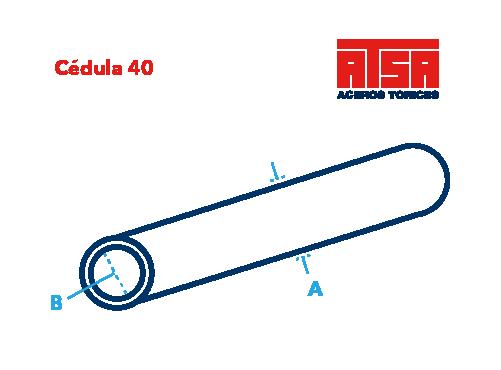Cédula 40